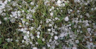 Metal roofs stand up to damaging hail