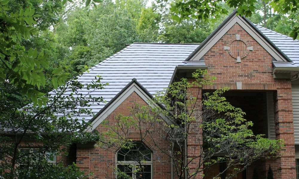 How Trees Can Damage Your Roof
