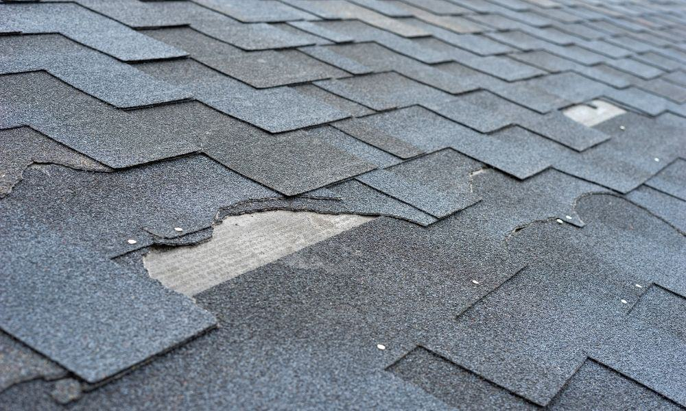 The Most Common Causes of Roof Damage